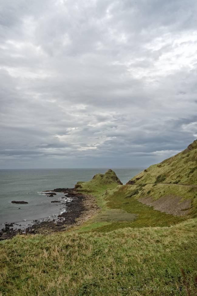 Wild and beautiful Giant's Causeway