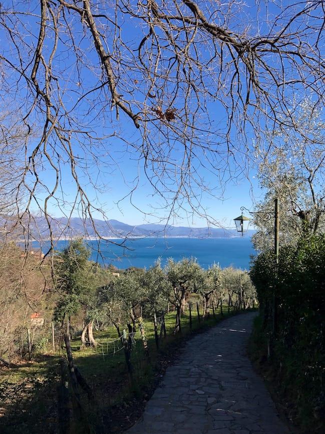 Above Santa Margherita