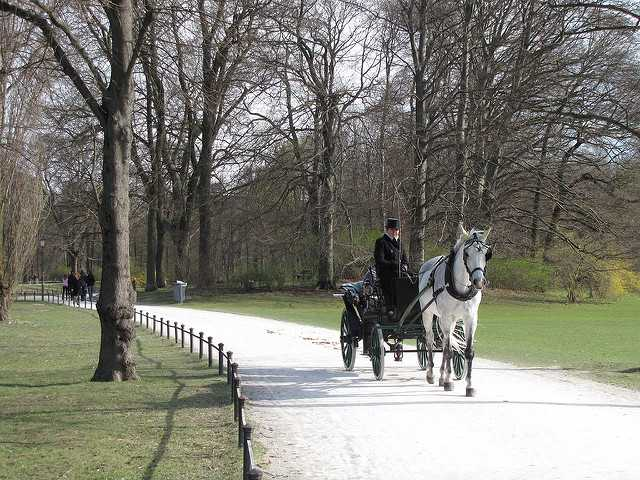 Carriage ride on the path along Kleinhesseloher
