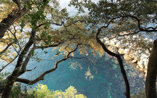 Hike Camogli Punta Chiappa-4