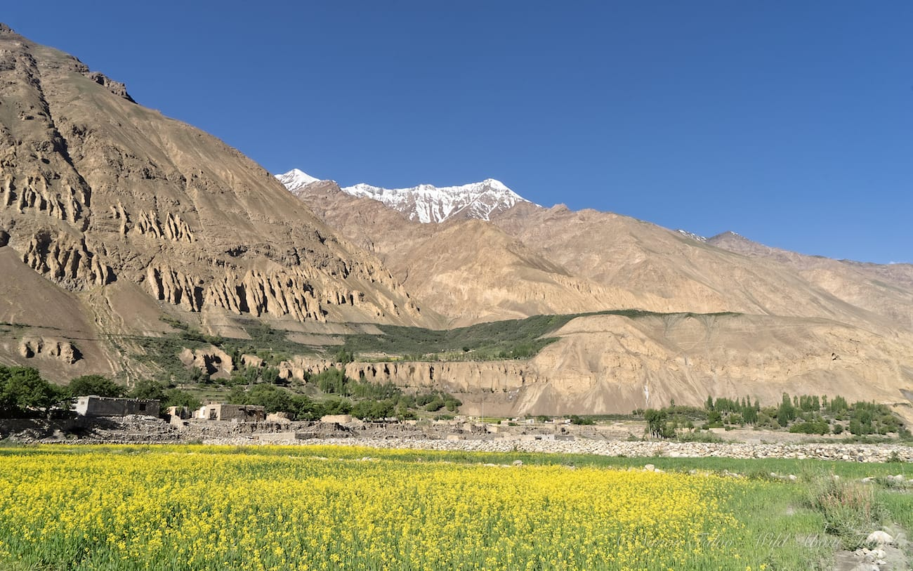 Pakistan - Shimshal Valley