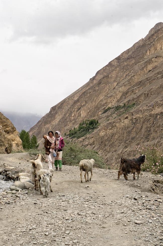 Shimshal Women