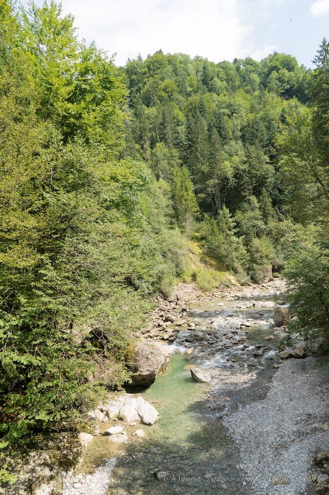 Bregenzerwald-Hiking
