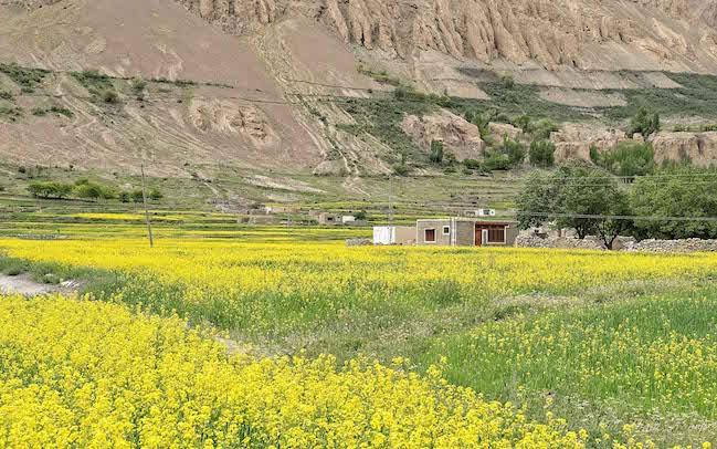 Pakistan, Shimshal Village