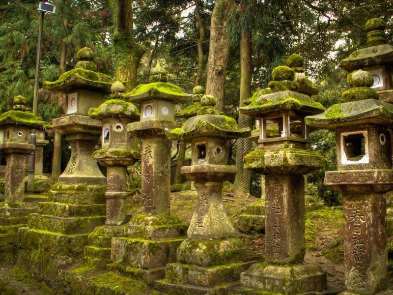 Lanterns at Kasuga Shrine