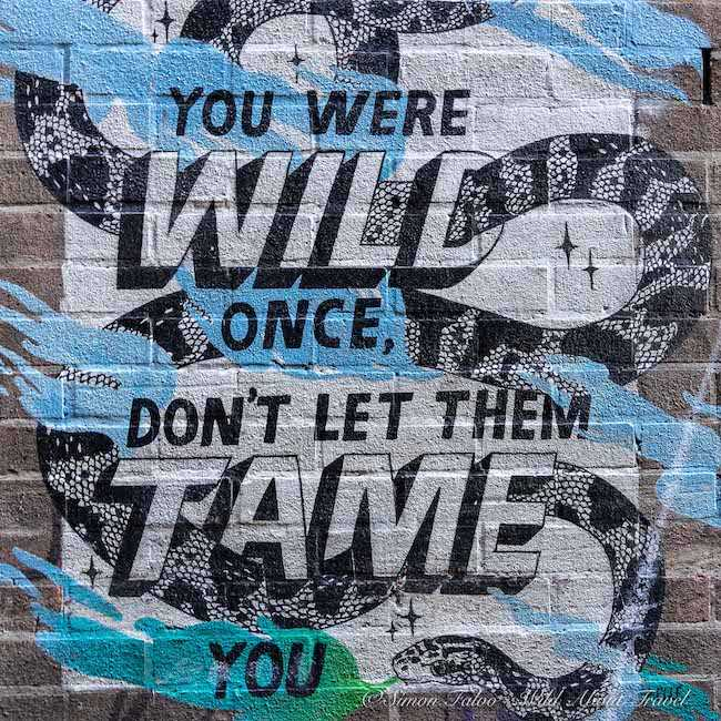 Bristol Graffiti