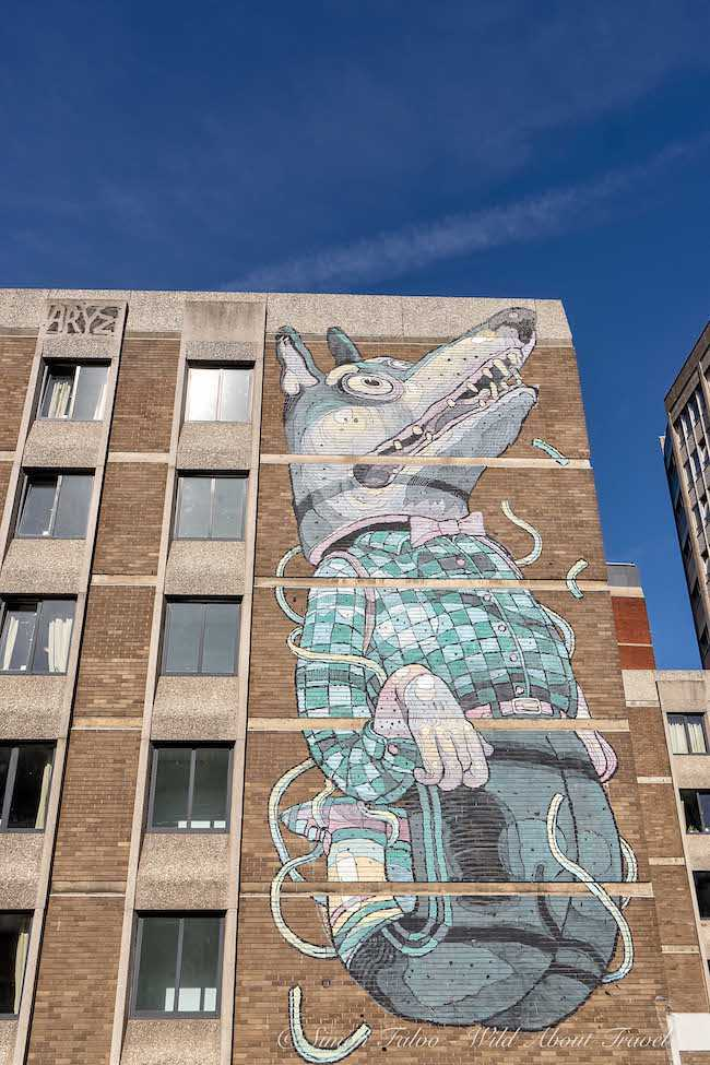 "Bristol Street Art - Aryz ""The Wolf"""