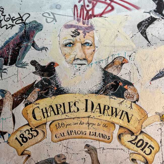 Bristol Urban Art