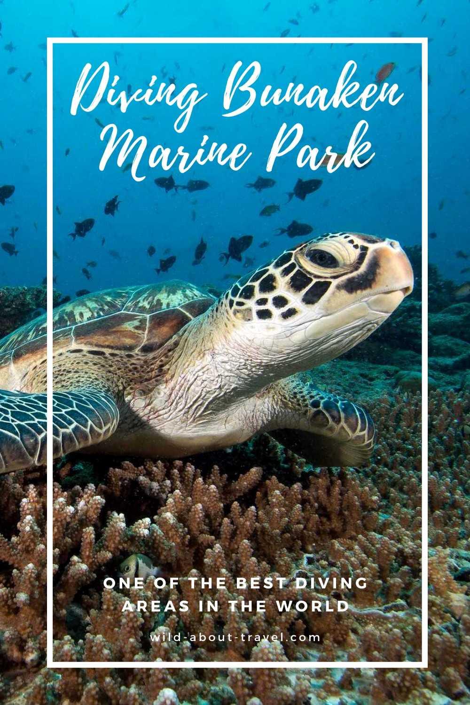 Scuba Diving Bunaken Marine Park