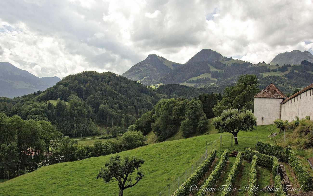 Gruyères Hills