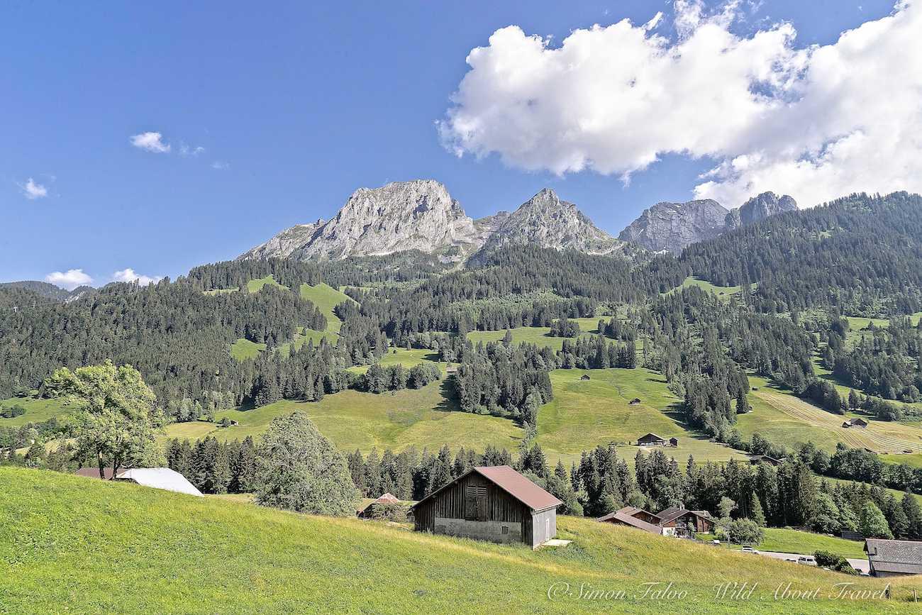 Switzerland - View from the Golden Pass Scenic Train