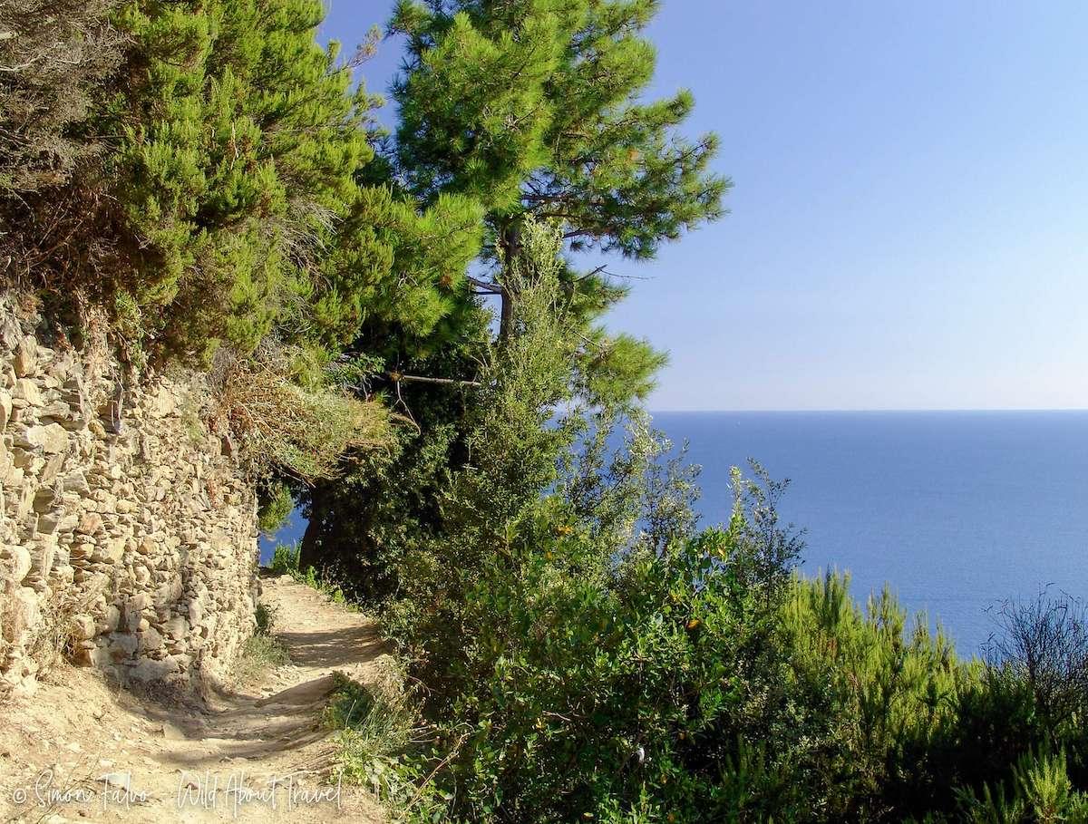 Cinque Terre Sentiero Azzurro